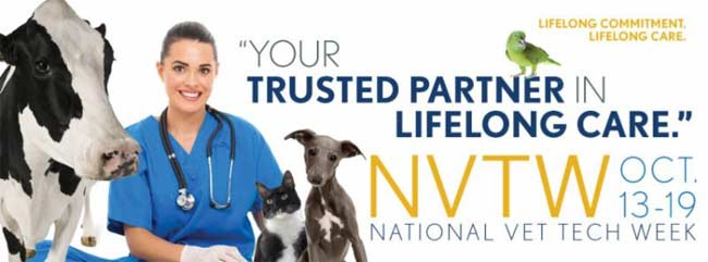 Veterinary Medical Center of Long Island Charity